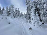 Krakonoš a skialpinisti vládnou horám